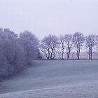 Mountfield in Winter by laurencedodd