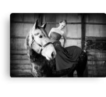 Fashion Horse Canvas Print