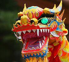 Dancing Dragon by Christophe Testi