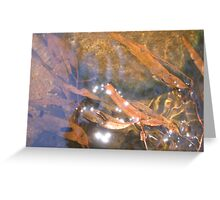 Sparlking Leaves Greeting Card