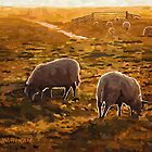 Sheep Ranch by Nazareth