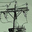 Green Power by Nigel Roulston