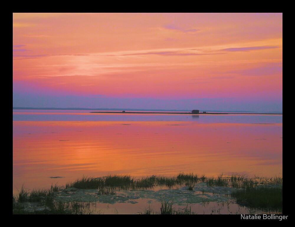 Sunset 531 by MidnightAkita