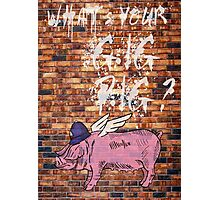 What's Your Gig Pig? - wall Photographic Print