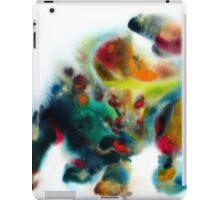 WALL STREET BULL iPad Case/Skin