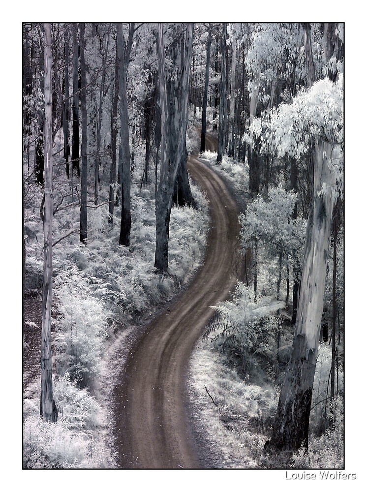 The Long & Winding Road by Louise Wolfers
