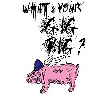 What's Your Gig Pig? Photographic Print