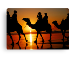 Camels at Sunset Canvas Print