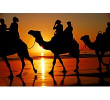 Camels at Sunset Photographic Print