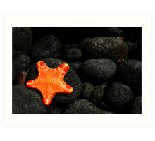 Star of the Sea Art Print