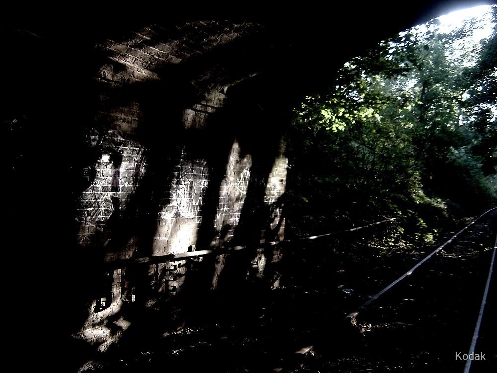 Graffiti under the bridge by Kodak
