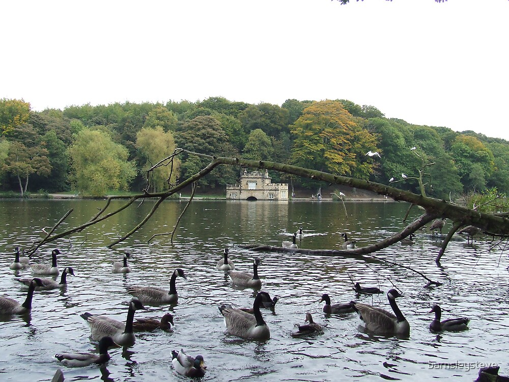 Newmillerdam boathouse October 2007 by barnsleysteve