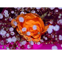 cant hide love Photographic Print