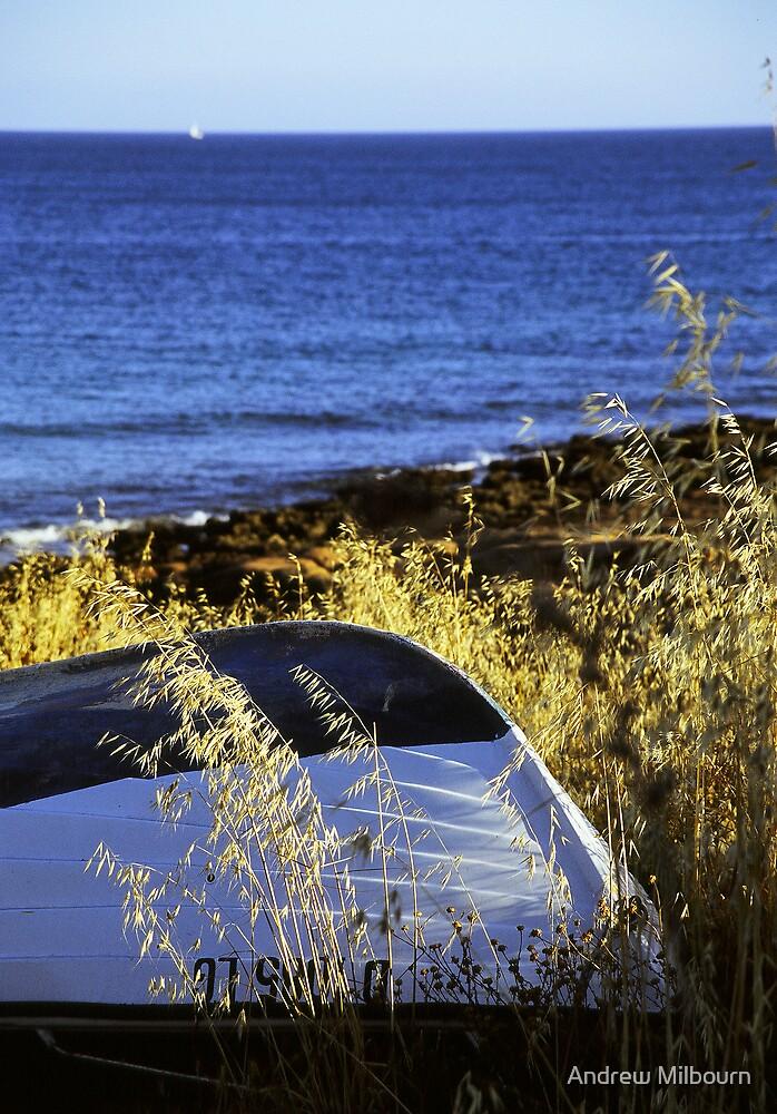 Praia da Luz - Clinker boat by Andrew Milbourn