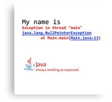 Java, always working as expected. Canvas Print