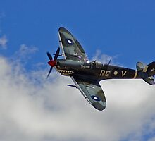 Supermarine Spitfire Mk VIII by greencardigan