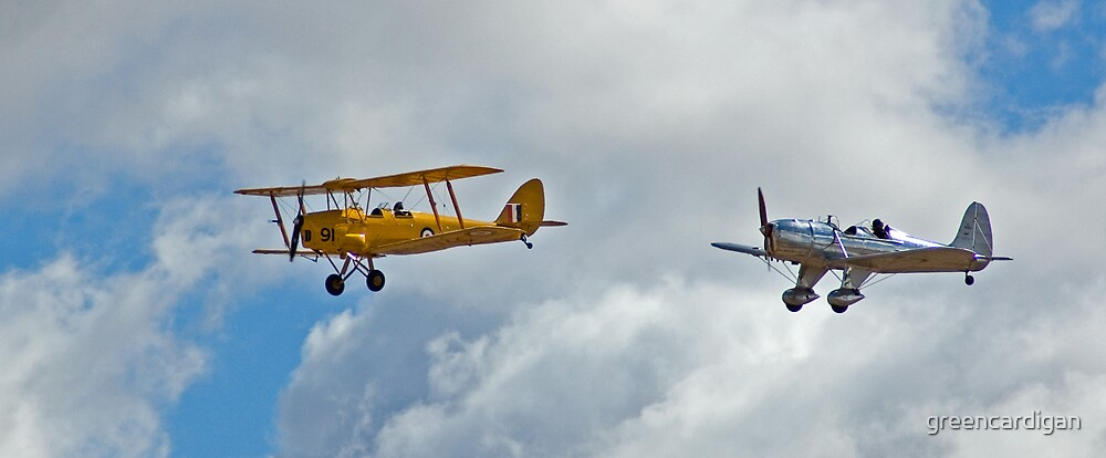 Tiger Moth and Ryan by greencardigan