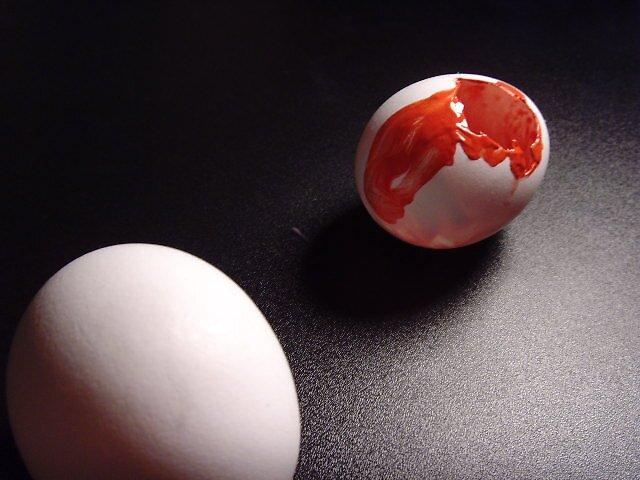 Eggs and Shadows Three. by RachelLea