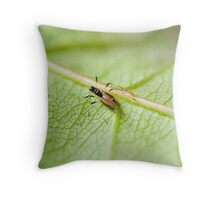 It's a Bugs Life Throw Pillow
