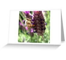 Lavender & Bee Greeting Card