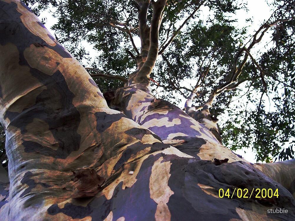 tree by stubbie