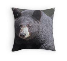 black bear, black bear... Throw Pillow