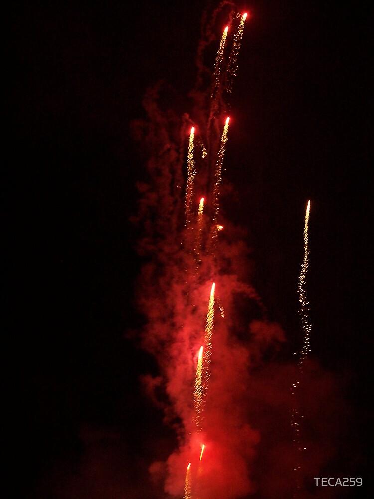 Fireworks by TECA259