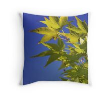 Aussi Spring Throw Pillow