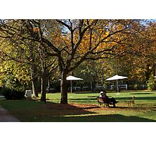 Chatting under the tree Photographic Print