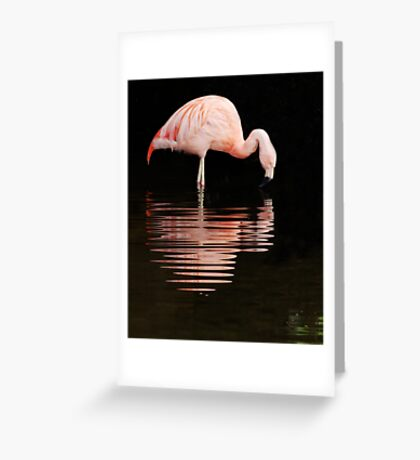 Pink reflections. Greeting Card