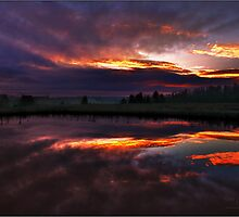 The Cracks of Dawn by Pretorious