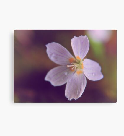 Say It With Flowers I Canvas Print