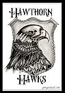 The hawks AFL  by Jenny Wood