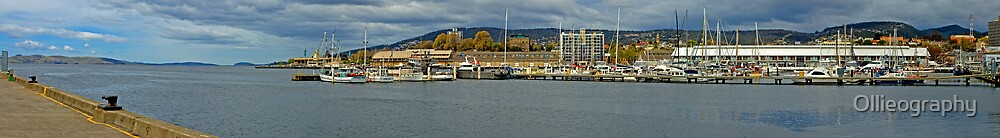 Docksite Panoramic by Ollieography