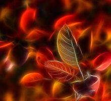 Autumn glow by Veikko  Suikkanen