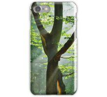 Summer Rays iPhone Case/Skin