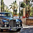 Luxury by Catalin Soare