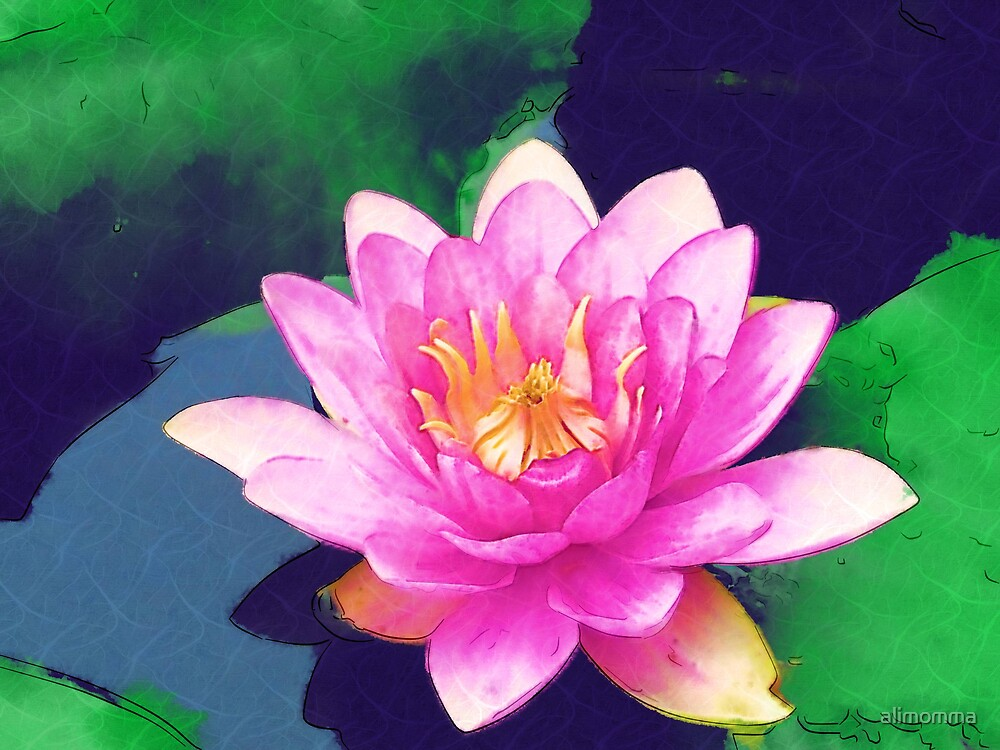 waterlilly by alimomma