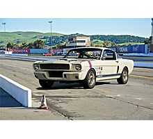 1966 Shelby Mustang G.T. 350 III Photographic Print