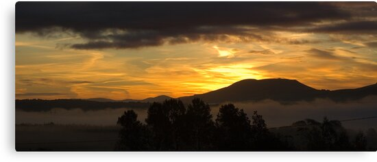 Sunrise - Keeper Hill, County Tipperary by Orla Flanagan
