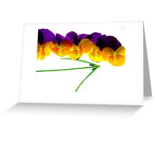 Going south... Greeting Card