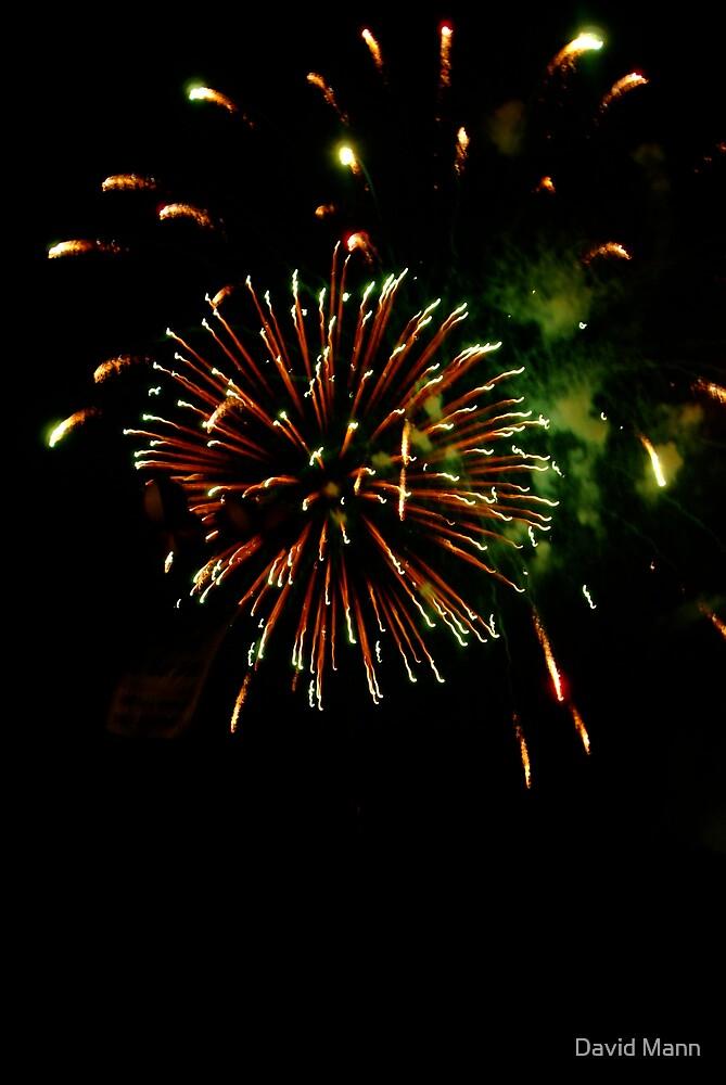 Fireworks 1 by David Mann