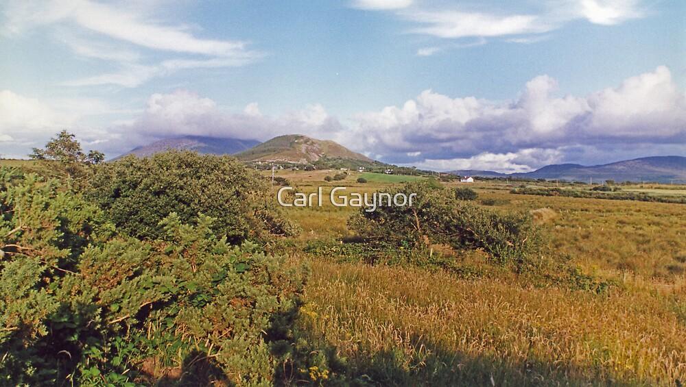 Inland - West Coast  by Carl Gaynor