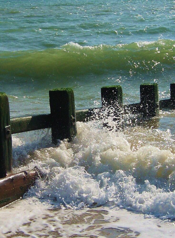 Sea spray. by Sara Wiggins