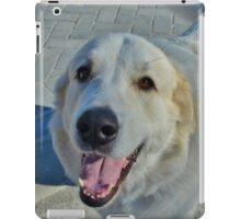 Hi there, new friend! iPad Case/Skin