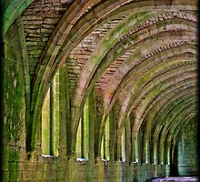 Fountains Abbey Cellarium  by Philip Baines
