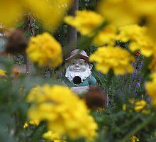 Garden Knome by JoJOlsen