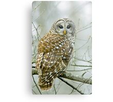 Winter's watchman Metal Print