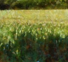 Green wheat field Sticker