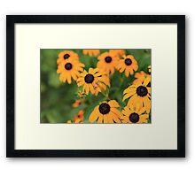 Find the Bug Framed Print